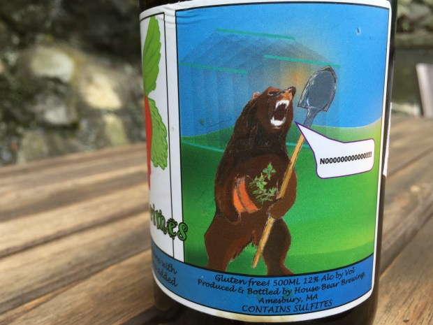 House Bear Review