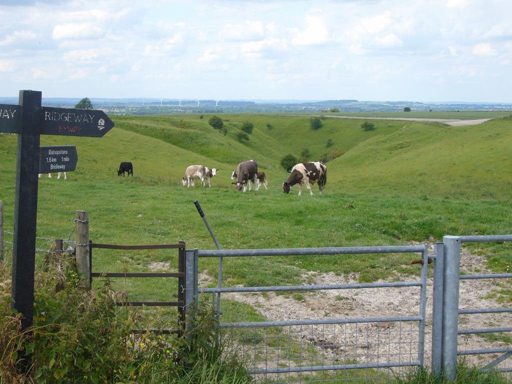 View from the Ridgeway near Bishopstone