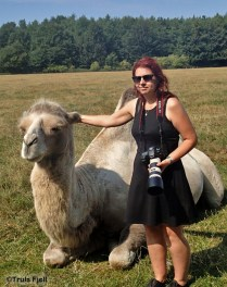 Anita is carfully petting a camel