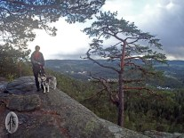 at the peak of Fantekjerringkollen. Truls and Denali