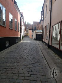 A Visby street, though the town had more charming parts that we forgot to take photos of.