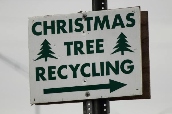 Christmas tree recycling sign