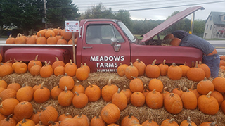 Meadows Farms is your fall decorating headquarters this season!