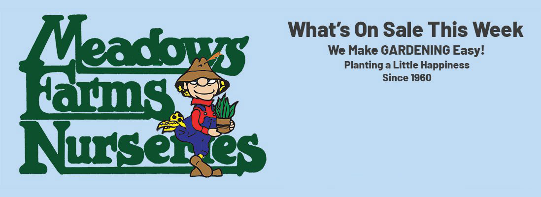 Meadows Farms Nurseries. What's On Sale This Week. We Make GARDENING Easy! Planting a Little Happiness since 1960.
