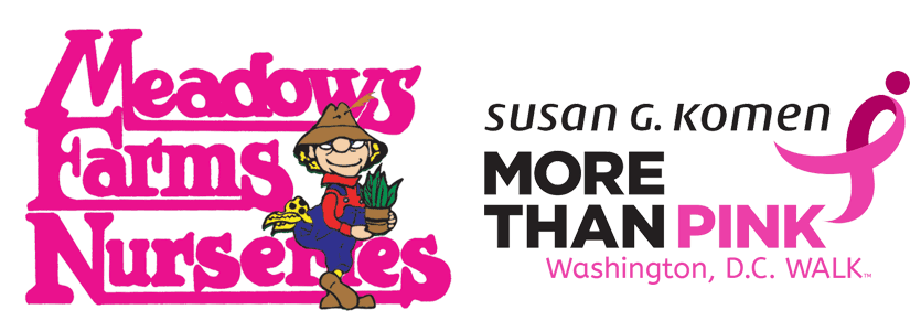 Meadows Farms Nurseries and Susan G. Komen More Than Pink Washington, D.C. WALK
