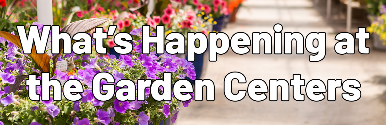 What's Happening at the Garden Centers