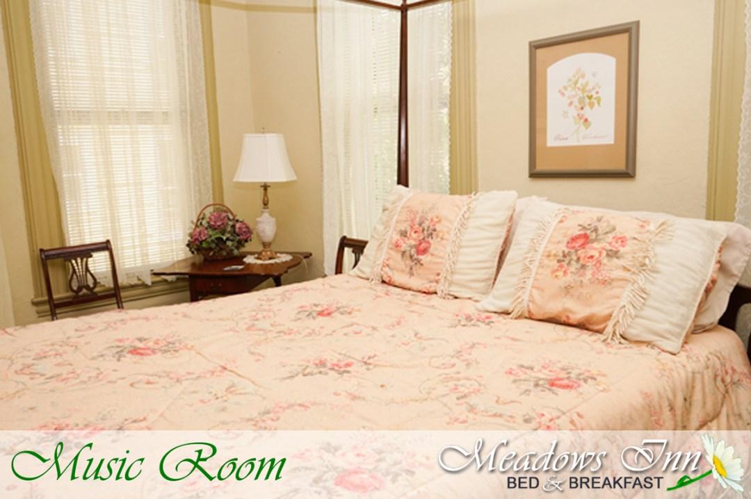 meadowsinn-musicroom
