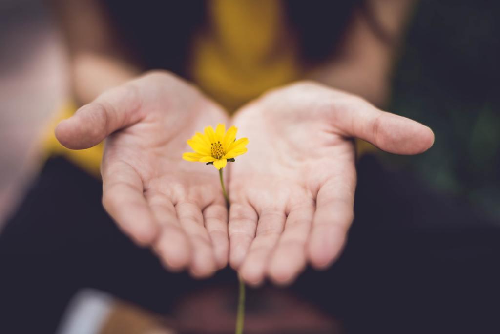 flower in hand