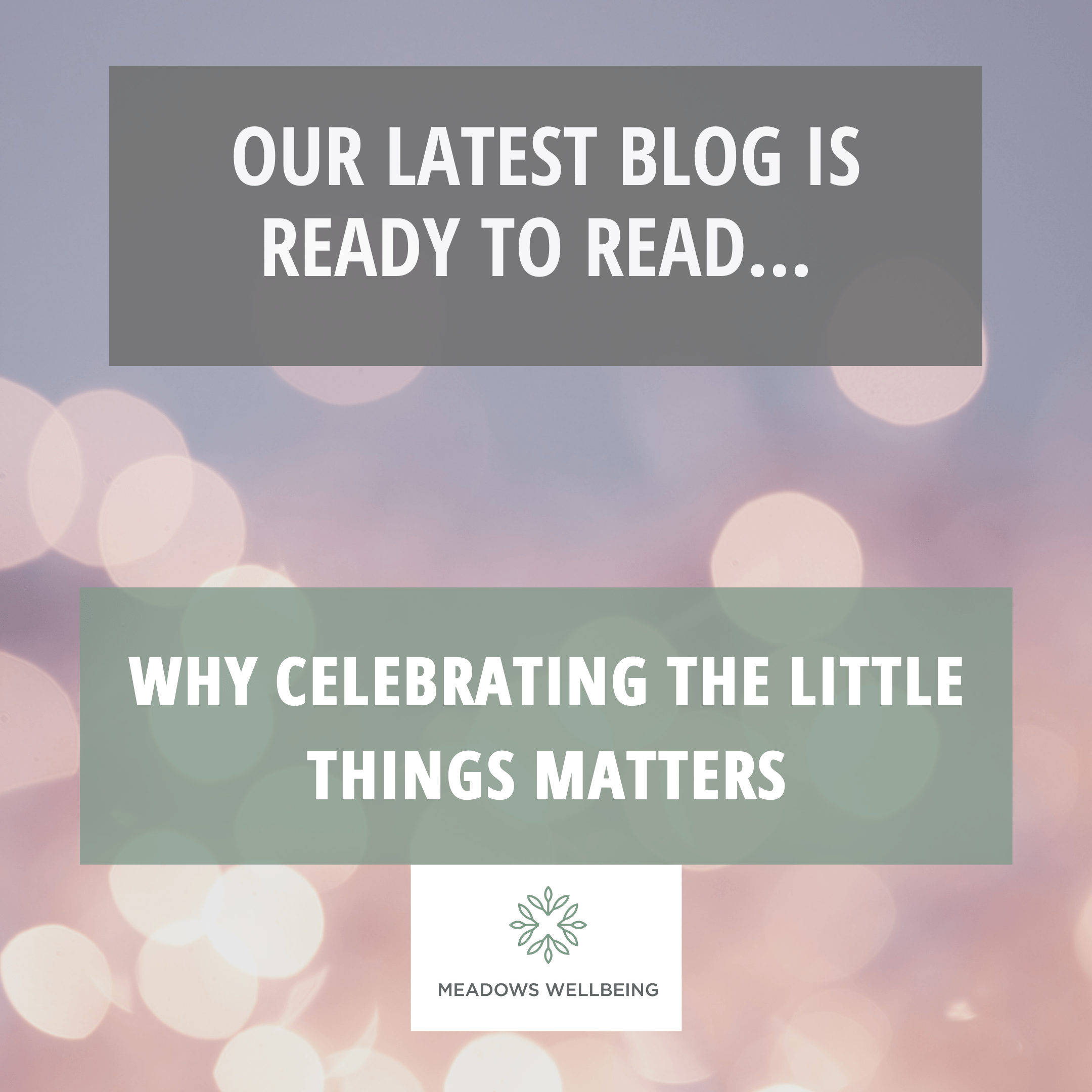 WHY CELEBRATING THE LITTLE THINGS MATTERS