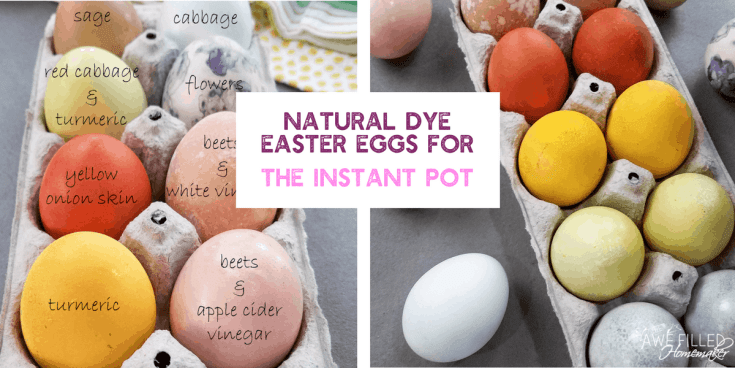 Natural Dye Easter Eggs For The Instant Pot