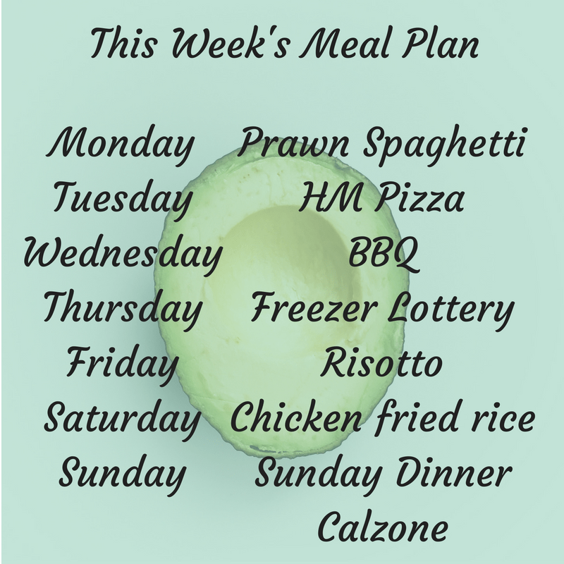 's Meal Plan