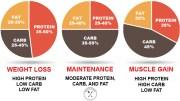 IIFYM Macros Calculator Pie Chart