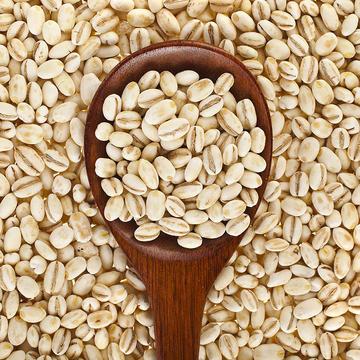 Barley in a spoon