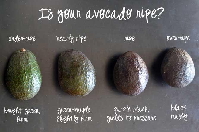 Does Avocado Go Bad? - Does It Go Bad?