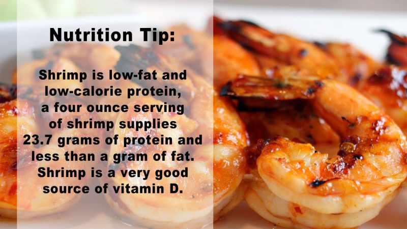 Shrimp Nutrition Tip