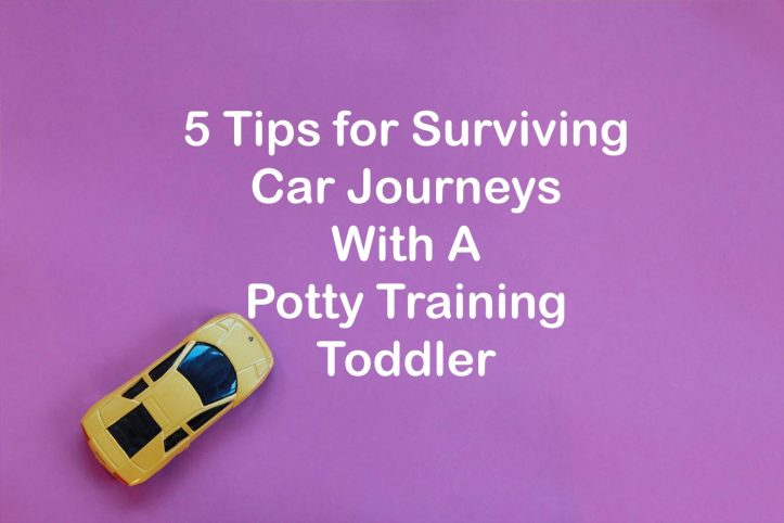 5 Tips for Surviving Car Journeys With A Potty TrainingToddler