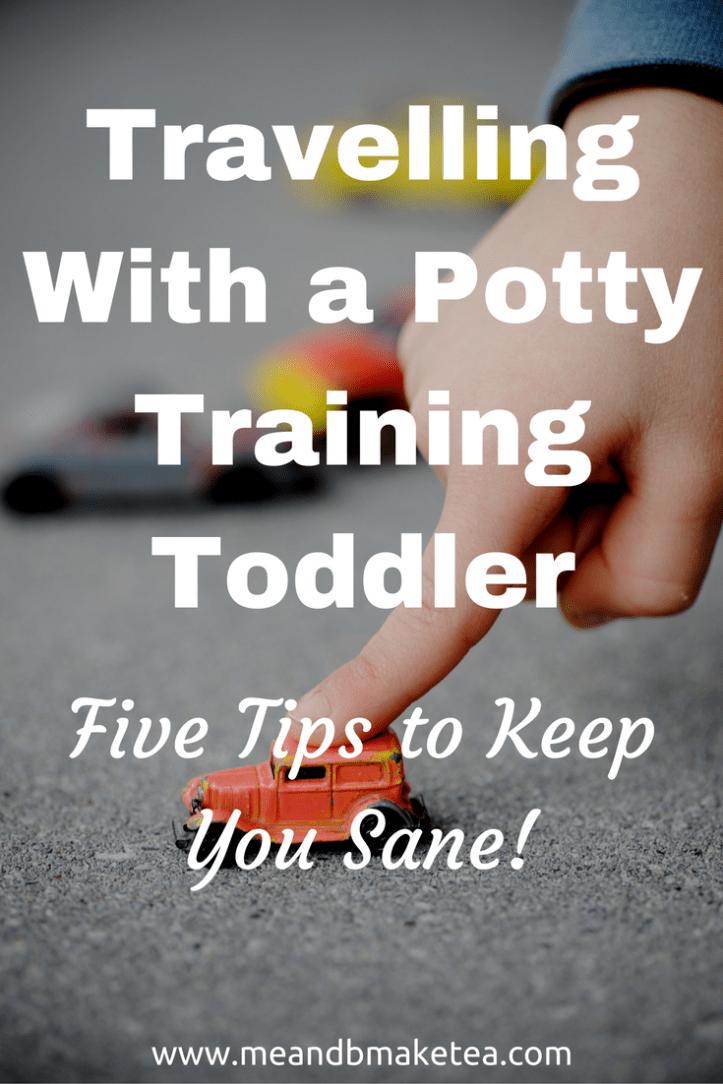 aaccbb025bc32 travelling with a toddler that is potty training tips what to do advice