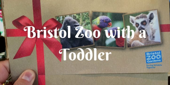 bristol-zoo-with-a-toddler
