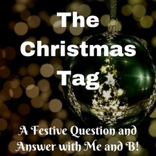 the christmas bloggers tag question and answer festive fun