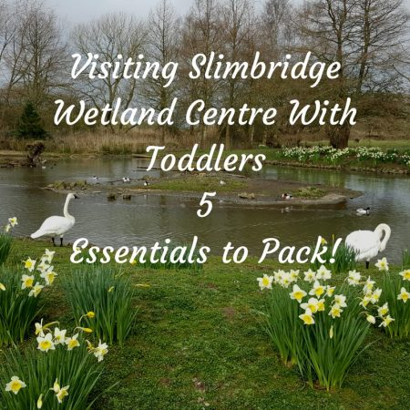 slimbridge review and tips and tricks on what to pack for toddlers kids for the best day out