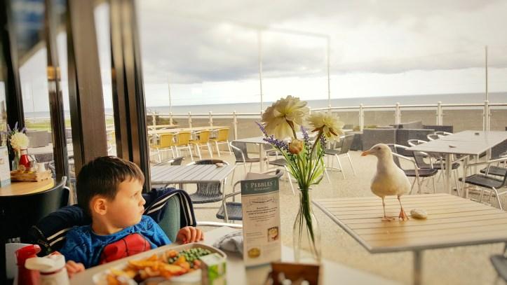 Pebbles restaurant ladram bay meal review