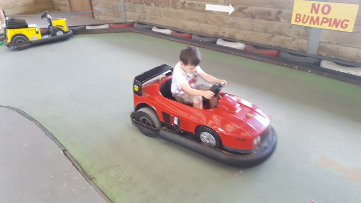 world of country life indoor fun cars