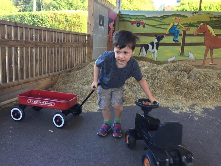 bicton botanical gardens in Devon farmyard fun for kids