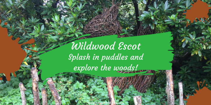 wildwood escot devon family day out outdoor