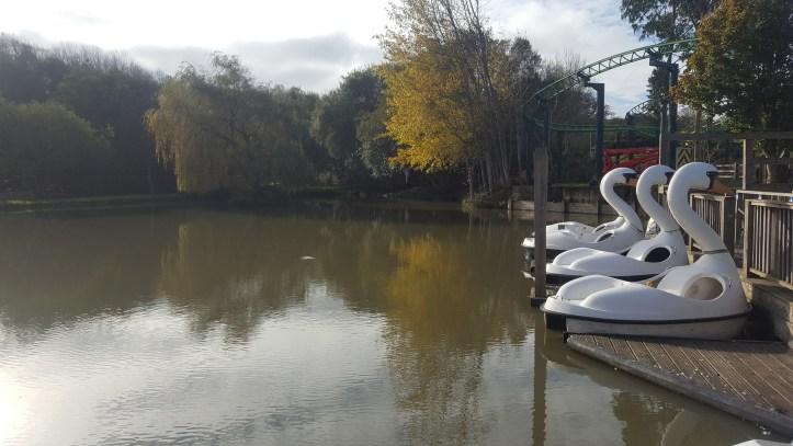 The big sheep devon amusement park swans