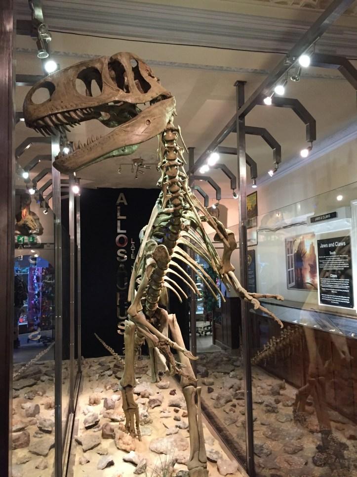 coombe martin dinosaur museum