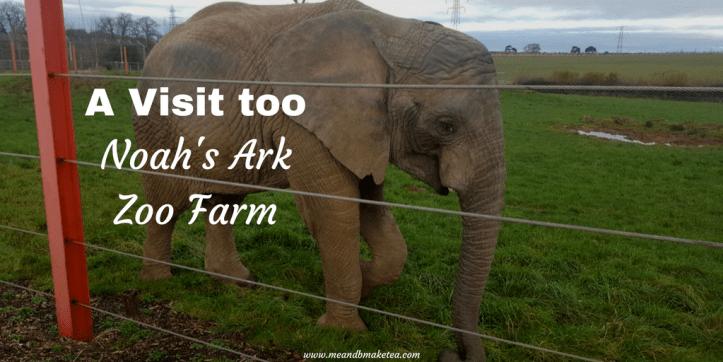 noahs ark soo farm bristol christmas