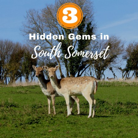 hidden gems and places to visit in South Somerset UK (2)