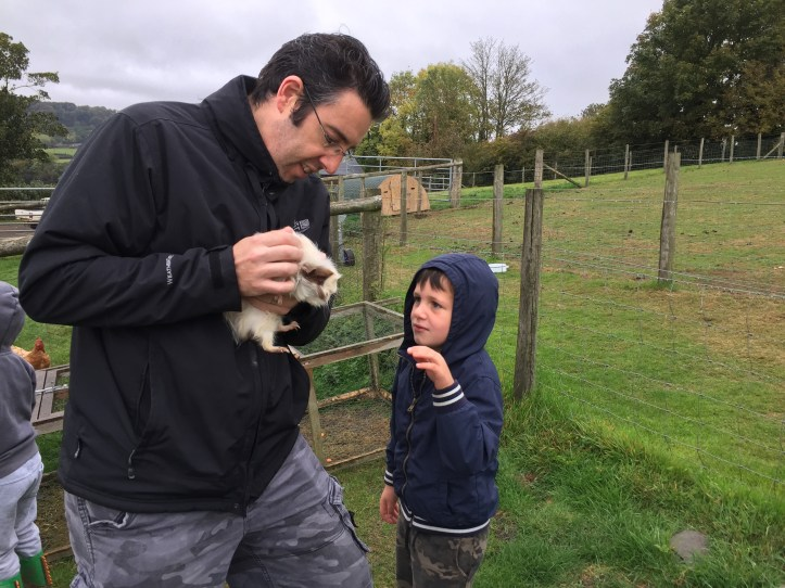 Feeding the animals at Parkers Farm Holiday Cottages & Caravansin Devon