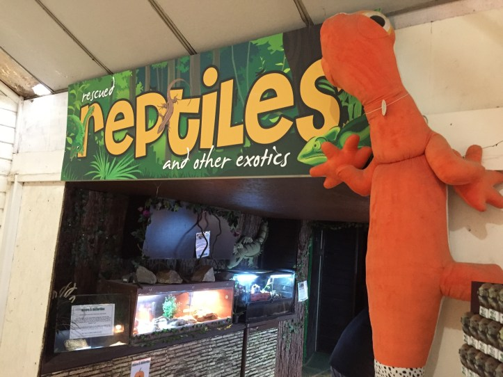 reptiles house - The Butterfly Farm and Otter Sanctuary in Dartmoor