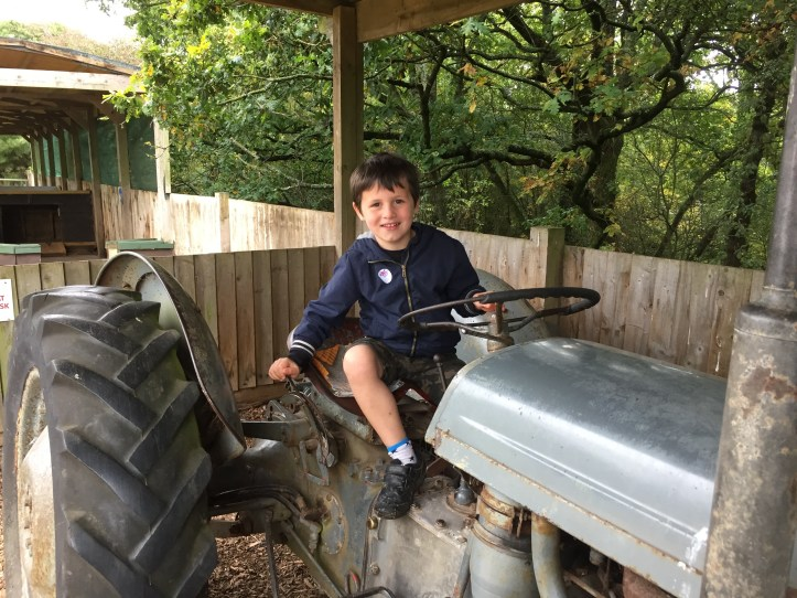 tractor riding at totnes rare breeds farm in devon review