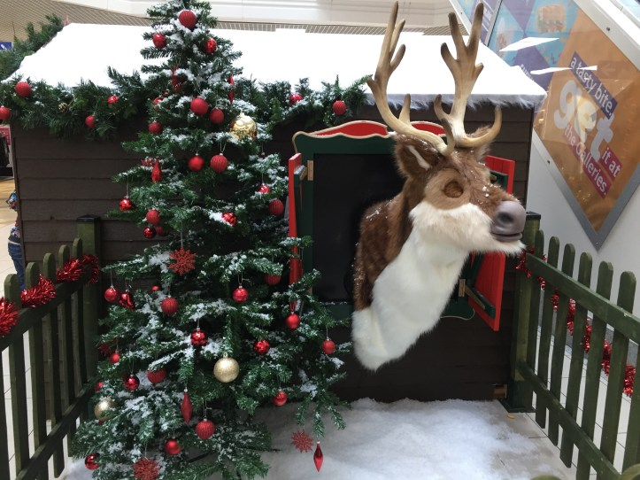 bristol christmas events and whats on