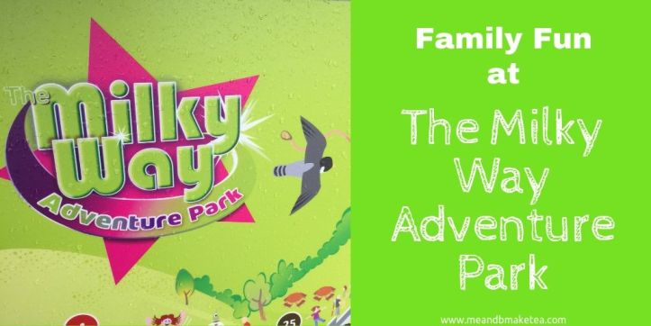 the milky way adventure park in devon review