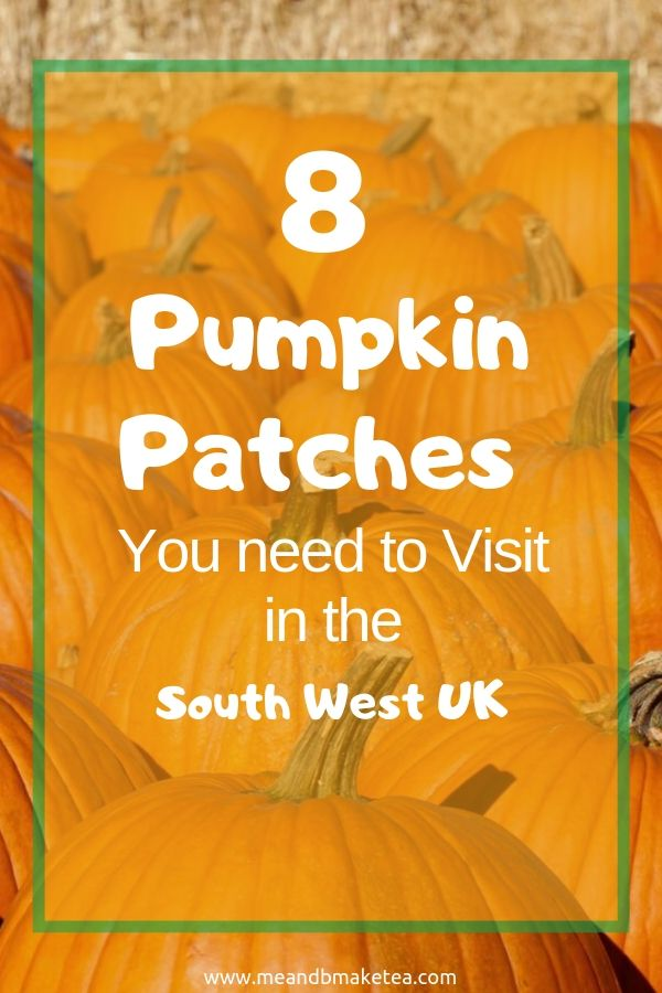 pumpkin-patches-south-west