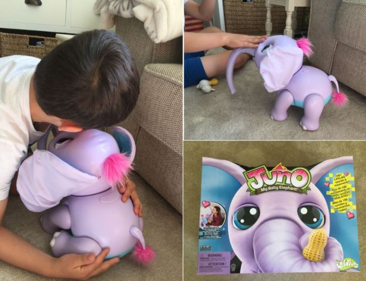 collage of juno my baby elephant review photos