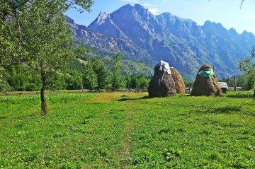 albania-hay