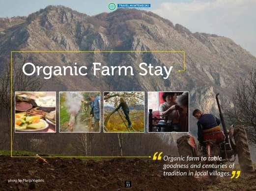 Organic Farm Stay
