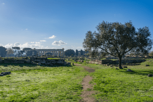 The absolutely stunning Paestum Italy