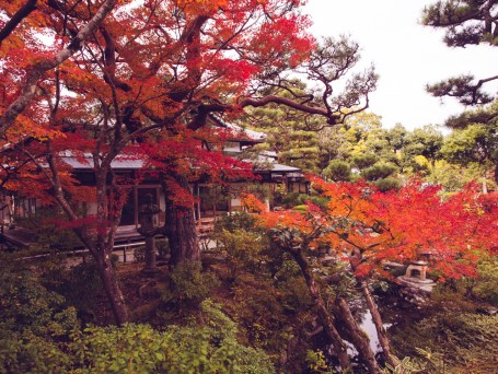 Nara Yoshikien Garden