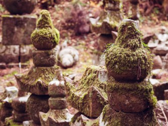 Moss on Koyasan