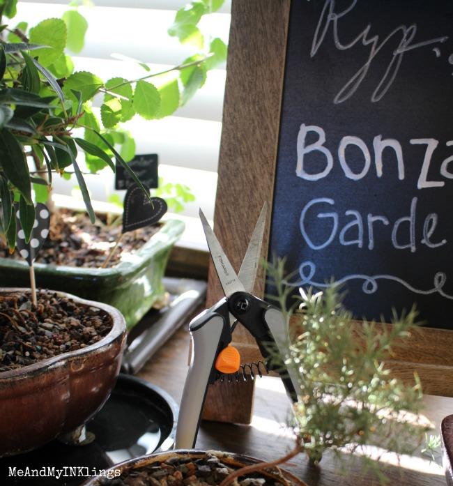 bonsai-Fiskars-2