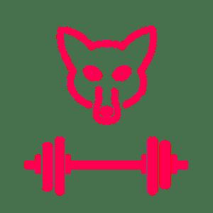 MeanFitFoxes Logo