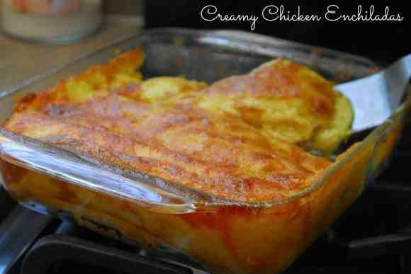 #chicken enchiladas #creamy #recipe-025
