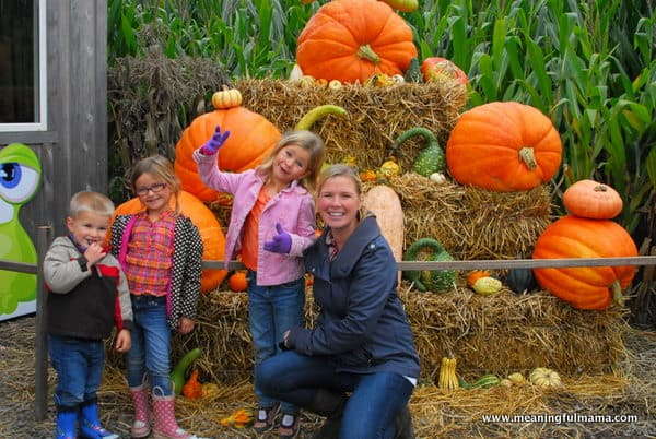 1-#pumpkin patch #corn maze #spooners-026