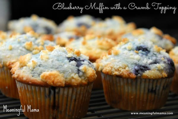 1-#blueberry muffins #recipe #crumble topping-017