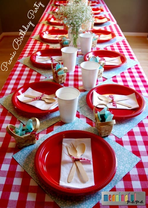 Picnic Birthday Party Ideas - Two Year Old Birthday